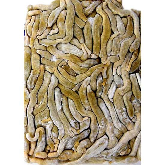 koder-dynabait-bibi-worms-35-gr