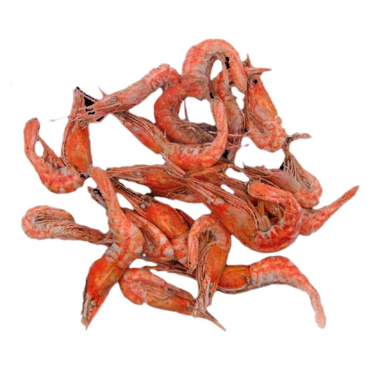 Dynabait Shrimps Whole