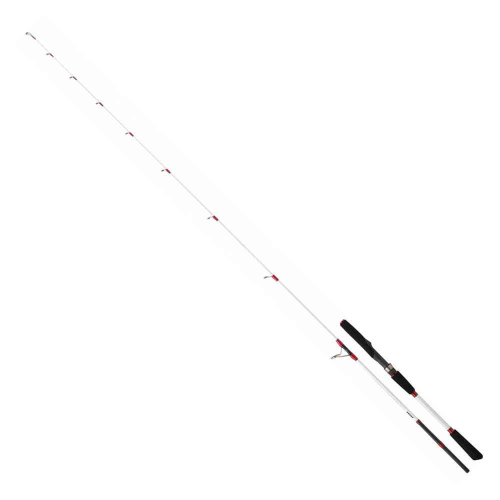 Daiwa Saltist Light Machine II